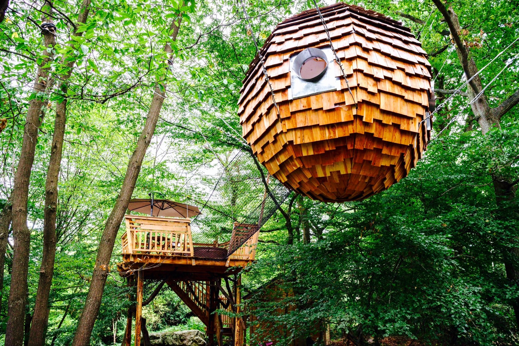 nuit insolite dans les arbres le bois de rosoy. Black Bedroom Furniture Sets. Home Design Ideas