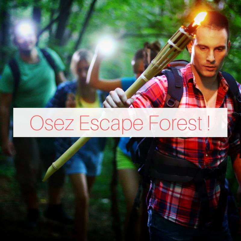 Jeux de piste en Forêt
